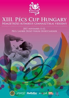 pecscup2017nov